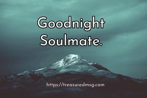 Goodnight Soulmate