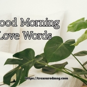 Good Morning Love Words