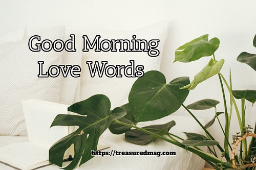 Good Morning Love Words