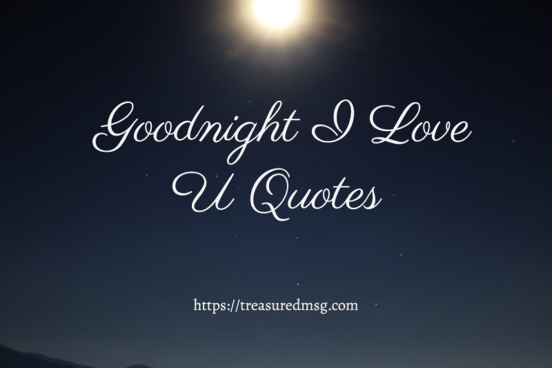 Goodnight I Love U Quotes