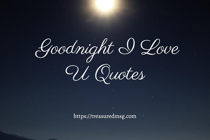Goodnight I Love U Quotes