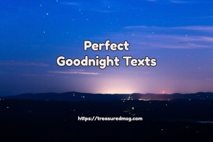 Perfect Goodnight Texts
