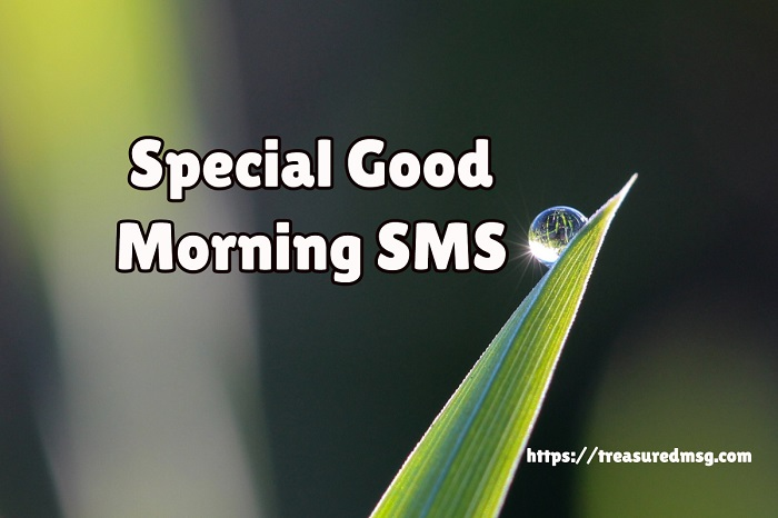 Special Good Morning SMS